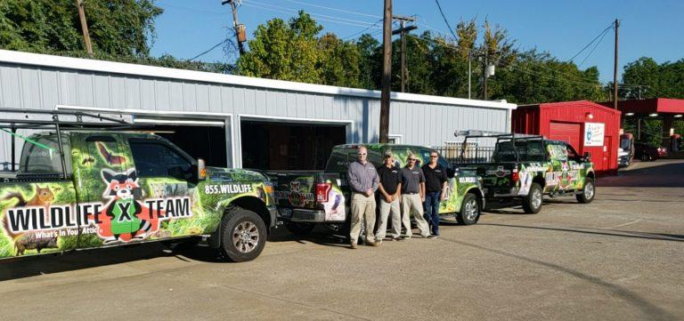 wildlife-team-central-texas